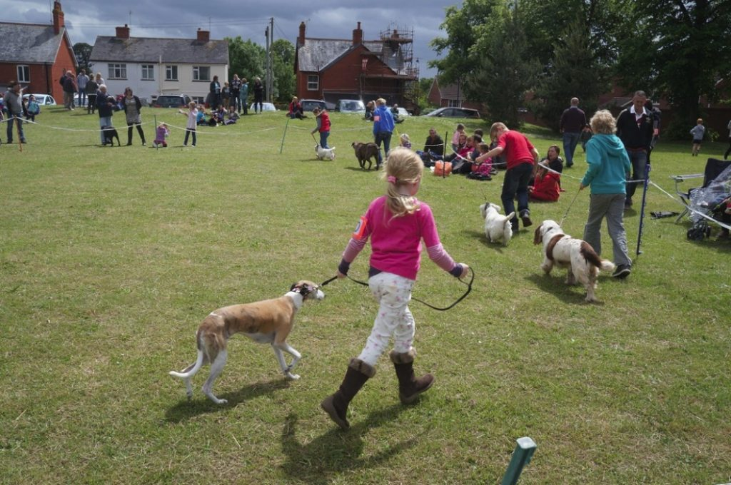 Village Dog Show & Fete. CSL. 2013