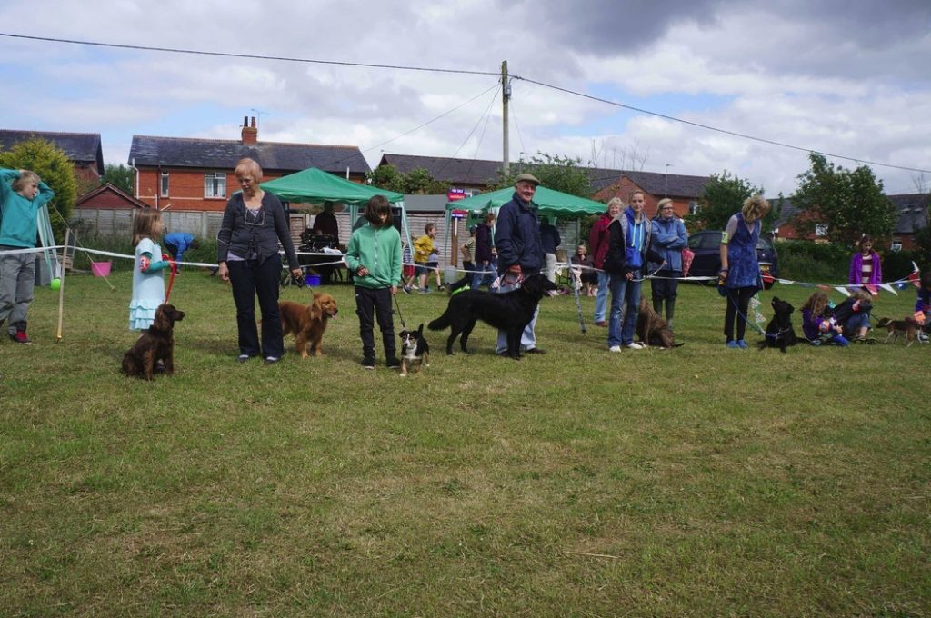 Village Dog Show And Fete 2013